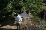 Dut silkelemek akçakent bahçe