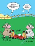 Admin Tarhan Bİçiyorlar..