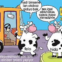 1844-hido 411059