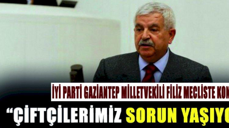 İYİ Parti Gaziantep Millet Vekili Filiz Mecliste K...